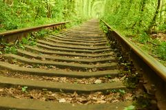 Old railway and green tunnel on background Royalty Free Stock Photo