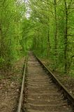 Old railway and green tunnel on background Royalty Free Stock Photography