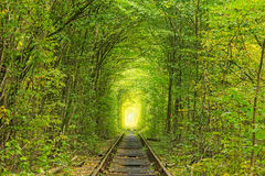 Old railway line. Nature with the help of trees has created a unique tunnel. Tunnel of love - wonderful place created by nature Stock Photo