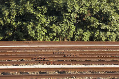Railway and bushes Royalty Free Stock Photos