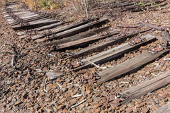 Old railway, railroad, rail track , abandoned, destroyed and overgrown wood Royalty Free Stock Images