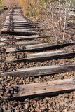Old railway, railroad, rail track , abandoned, destroyed and overgrown wood Stock Image