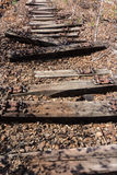 Old railway, railroad, rail track , abandoned, destroyed and overgrown wood Stock Photo