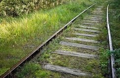 Old railway track in the forest Royalty Free Stock Photos
