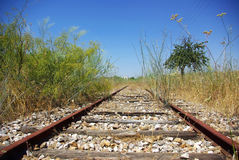 Old railway track in the plain. Stock Photos