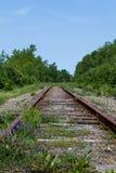 Old Railway Tracks in Cape Breton, Nova Scotia Stock Photo