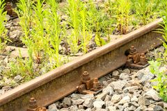 Old railway tracks. Old rusty empty railway with growing grass. Nature beats industry royalty free stock photography