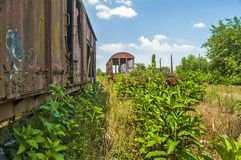 Old railway wagons in the grass Royalty Free Stock Images