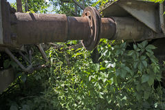 Old railway wagons in the grass Stock Photography