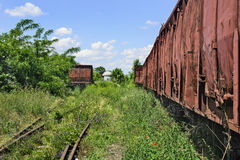 Old railway wagons in the grass Royalty Free Stock Photography