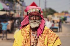 Old Rajasthani man against the background of his camels. Indian man attended the annual Pushkar Camel Mela Royalty Free Stock Image