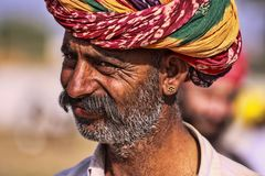 Old Rajasthani man against the background of his camels royalty free stock images