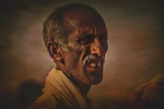 Old Rajasthani man against the background of his camels Stock Images