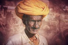 Old Rajasthani man against the background of his camels Stock Photos