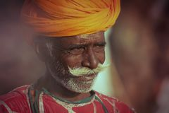 Old Rajasthani man against the background of his camels. Portrait indian man attended the annual Pushkar Camel Mela Stock Images