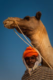 Old rajasthani man with camel Stock Photo