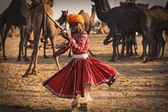 Old Rajasthani man dances against the background of his camels stock photo
