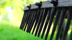Old rake Royalty Free Stock Photography