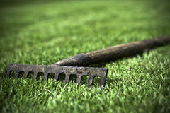 Old rake on the garden Stock Images