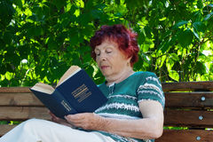 Old reading woman Stock Photos