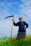 The old Reaper man. In the fields holding a scythe Royalty Free Stock Image