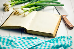 Old recipe book with spring onion Royalty Free Stock Image