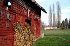 The Old Red Barn. Red Barn - Located near Hood River Oregon on the Fruit Loop Royalty Free Stock Photos