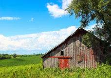 Old Red Barn. An old abandoned red barn in the country royalty free stock images