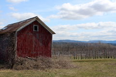 Old red barn overlooking apple orchard Royalty Free Stock Photos