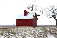 Old Red Barn and Trees in Winter in Illinois Stock Images
