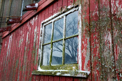 Old Red Barn and Window Close up in Illinois. An old red barn window with peeling paint and moss Royalty Free Stock Photo