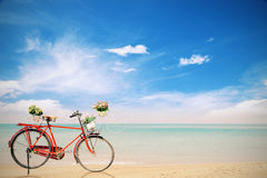 Old red Bicycle with basket  flowers on beautiful beach tropical Stock Photos