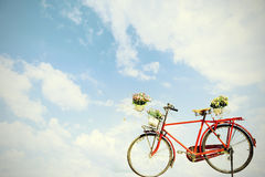 Old red bicycle with flower in basket on blue sky background,vin. Tage style color Royalty Free Stock Photography