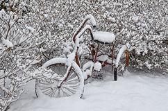 Old Red Bike in Snow. An old red adult three wheel bike in the snow. A winter or Christmas concept Royalty Free Stock Photos