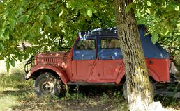 Old red blue car in shade of tree. And leaves stock images