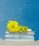 Yellow flowers on the books on the blue background Royalty Free Stock Photo