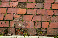Old  red brick decorative pavement background Stock Images