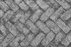 Free Old Red Brick Floor With Moss Stock Image - 63937651