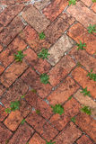 Old Red Brick Herringbone Stock Photography