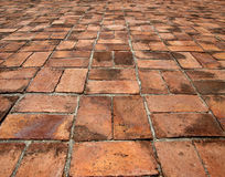 Old red brick pathway Royalty Free Stock Image