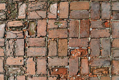 Old red brick pavement background Stock Images