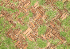 Old red brick paving stones with grass growing along Stock Photos
