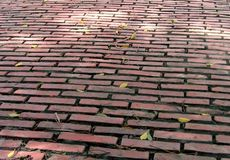 Old Red Brick Road. With patches of sunlight and fallen leaves Stock Images