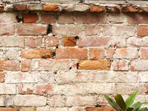 Old red brick stone Stock Image