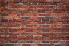 The old red brick wall Stock Image