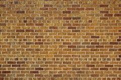 The old red brick wall Royalty Free Stock Image