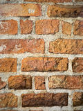 Old red brick wall. Close up Stock Images