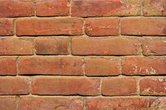 Old red brick wall close-up Royalty Free Stock Photography