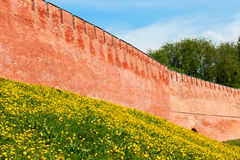 Old red brick wall of the Kremlin on the hill with green grass and yellow dandelions Royalty Free Stock Photography