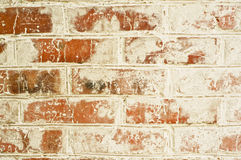 Old red brick wall. With shabby stucco beoy Royalty Free Stock Photos
